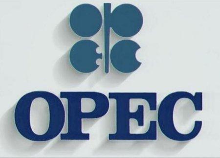Добыча нефти в ОПЕК в июне выросла до 32,61 млн баррелей в сутки
