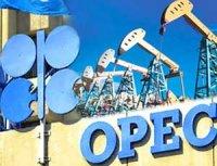 Цена нефтяной корзины ОПЕК снизилась на полдоллара